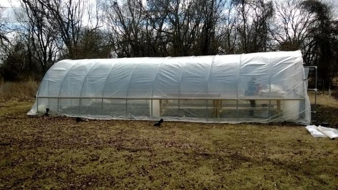 B-P Greenhouse!