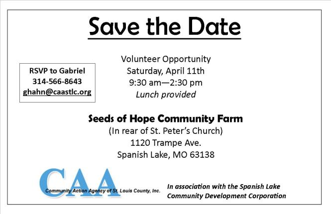 volunteer opportunity (2)