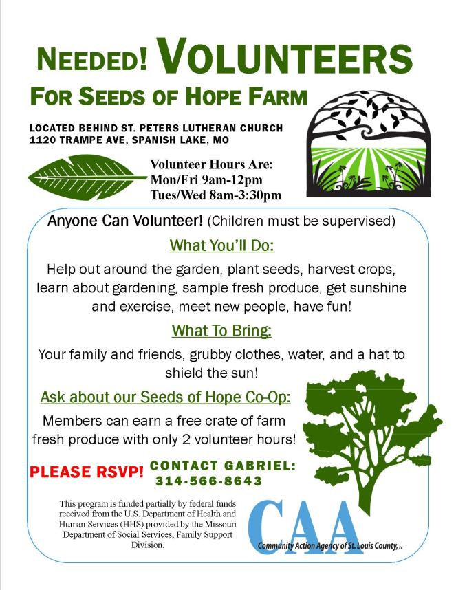 Volunteers Flyer SOH
