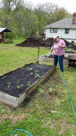 Our community gardens in Bel-Ridge, Overland, Spanish Lake, Lemay, and Castle Point help empower families to eat better and get active!