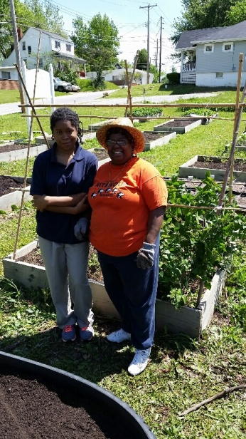 Our free gardening classes show you budget-friendly ways to get started in a community garden plot or in your own backyard!