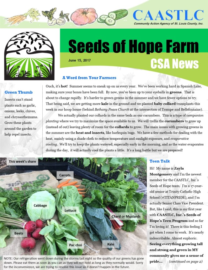 4_CSA Newsletter 06.15.2017 pg1