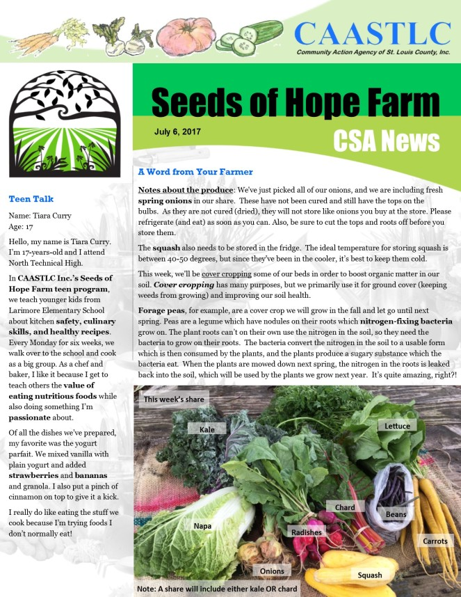 7_CSA Newsletter 07.06.2017 pg1