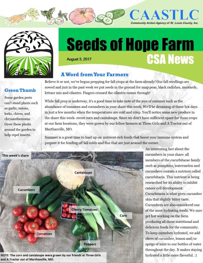 11_CSA Newsletter 08.03.2017 pg 1