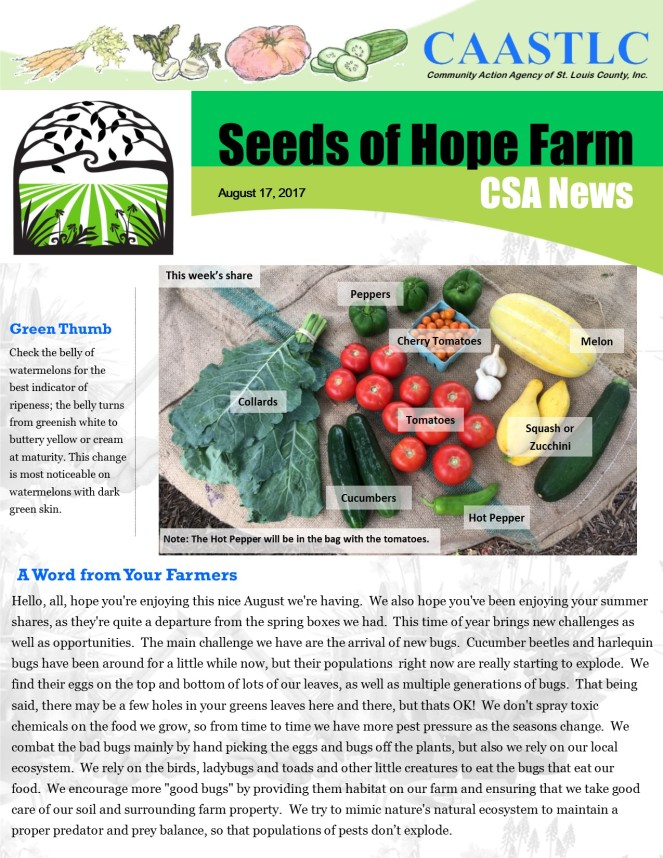 13_CSA Newsletter 08.17.2017 pg 1