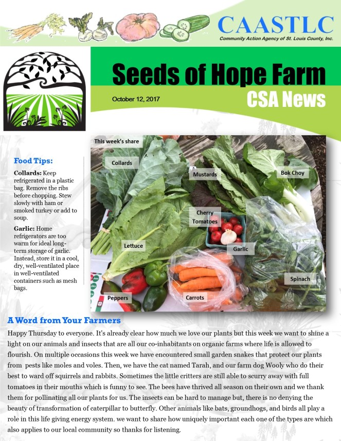 21_CSA Newsletter 10.12.2017 pg 1