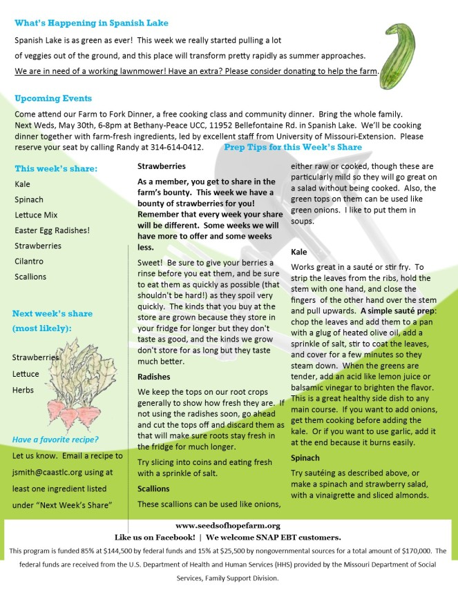 Week 1 5.24 2018 CSA Newsletter pg 2