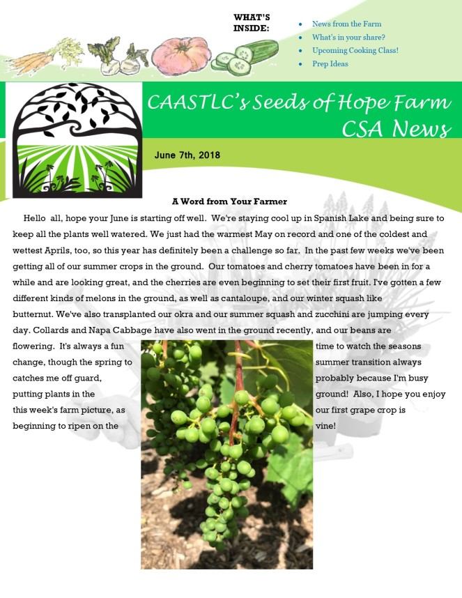 Week 3 6.07 2018 CSA Newsletter jpeg
