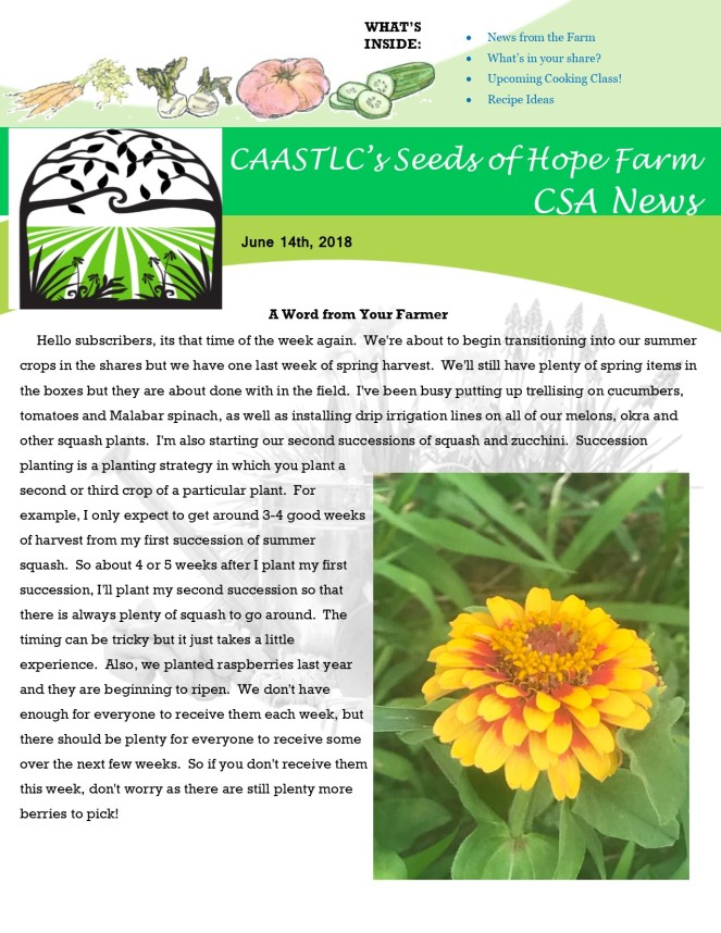Week 4 6.14 2018 CSA Newsletter