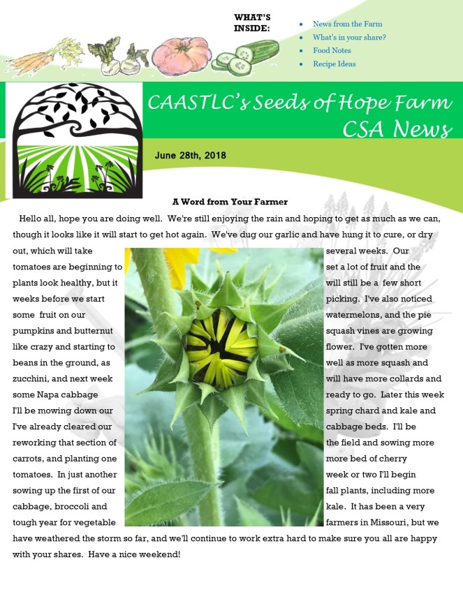 Week 6 6.28 2018 CSA Newsletter pg1