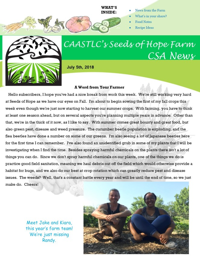 Week 7 7.05 2018 CSA Newsletter pg1