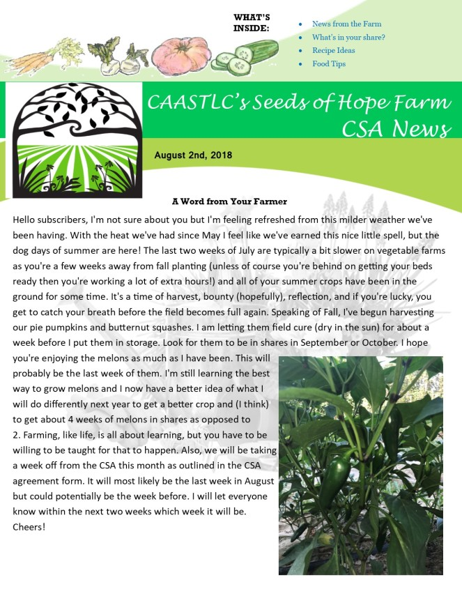 Week 11 8.02 2018 CSA Newsletter pg1