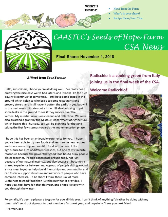 11.1 2018 CSA Newsletter pg 1
