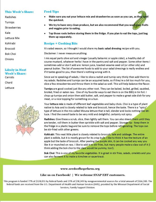 CSA Newsletter 6 June 2019 FINAL pg 2