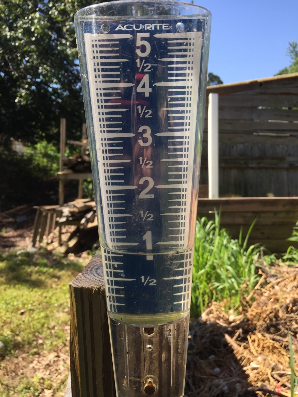 rain gauge early june