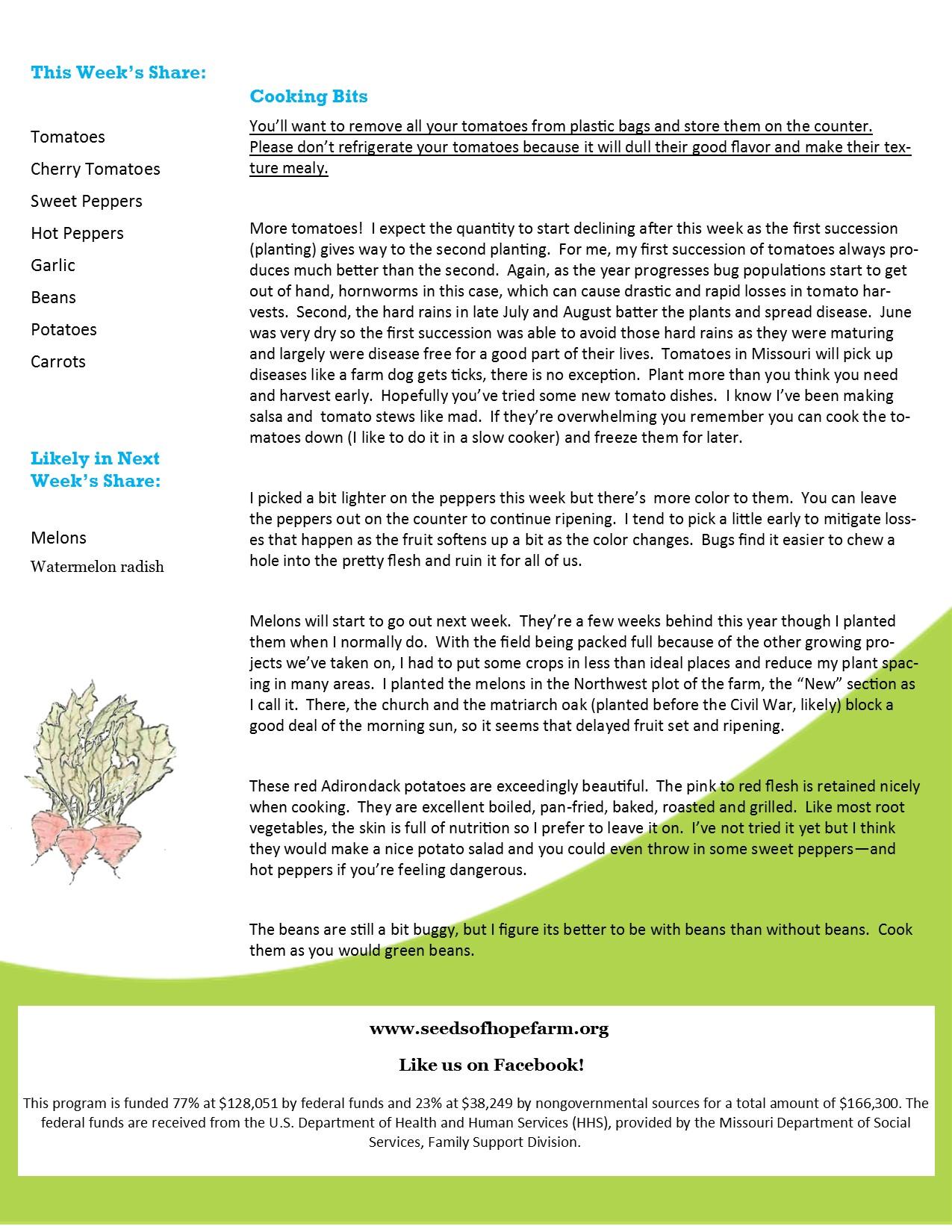 2020 CSA Newsletter aug 27 back
