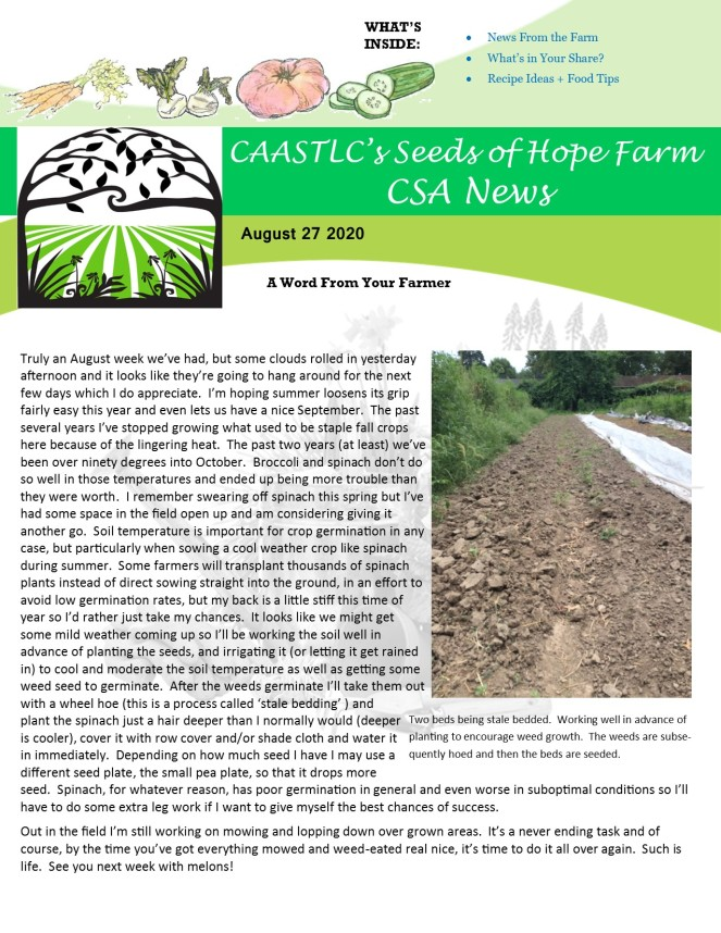 2020 CSA Newsletter aug 27